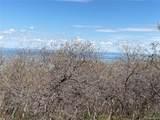 14860 Elk Mountain Trail - Photo 14