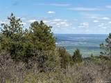 14860 Elk Mountain Trail - Photo 17