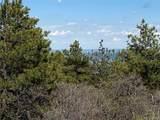 14860 Elk Mountain Trail - Photo 3