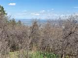 14860 Elk Mountain Trail - Photo 5