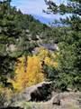 15555 Austin Trail - Photo 4