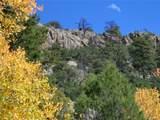 15555 Austin Trail - Photo 5