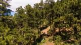 27292 Ridge Trail - Photo 39