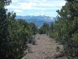 232 Aspen Drive - Photo 8