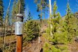 20 Tip Top Trail - Photo 18