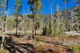 20 Tip Top Trail - Photo 9