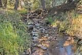 10404 Shadow Brook Drive - Photo 23