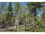 Beaver Creek Road - Photo 5