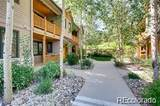 31256 Stone Canyon Road - Photo 2