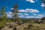 14433 Lot 9 Elk Creek Road - Photo 8