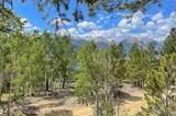198 Parry Peak Drive - Photo 8