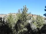 4964 Comanche Drive - Photo 23