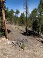 1297 Sequoia Drive - Photo 19