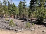 1297 Sequoia Drive - Photo 2