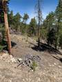 1297 Sequoia Drive - Photo 20