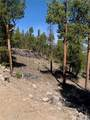 1297 Sequoia Drive - Photo 24