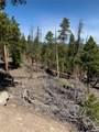 1297 Sequoia Drive - Photo 3