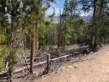1297 Sequoia Drive - Photo 5