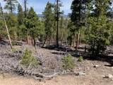 1297 Sequoia Drive - Photo 7