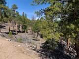 1297 Sequoia Drive - Photo 9