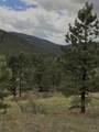 8467 Spirit Horse Trail - Photo 23