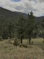 8467 Spirit Horse Trail - Photo 24