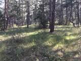 1697 Spruce Mountain Drive - Photo 10