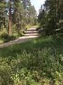 1697 Spruce Mountain Drive - Photo 2