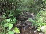 1697 Spruce Mountain Drive - Photo 4