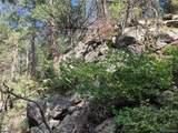 1697 Spruce Mountain Drive - Photo 6