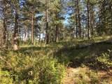 1697 Spruce Mountain Drive - Photo 7