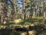 1697 Spruce Mountain Drive - Photo 8