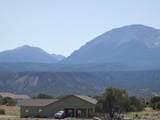 11600 Las Colinas Drive - Photo 3