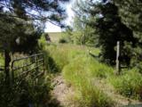 9302 Tollgate Drive - Photo 13