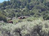 35.1 ac Whitetail And Big Buck Trail - Photo 10