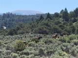 35.1 ac Whitetail And Big Buck Trail - Photo 12