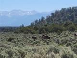 35.1 ac Whitetail And Big Buck Trail - Photo 13