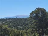 35.1 ac Whitetail And Big Buck Trail - Photo 14