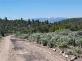 35.1 ac Whitetail And Big Buck Trail - Photo 15