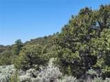 35.1 ac Whitetail And Big Buck Trail - Photo 16