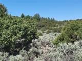 35.1 ac Whitetail And Big Buck Trail - Photo 17