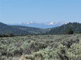 35.1 ac Whitetail And Big Buck Trail - Photo 2
