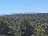 35.1 ac Whitetail And Big Buck Trail - Photo 3