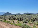 35.1 ac Whitetail And Big Buck Trail - Photo 5