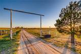 10740 County Road 126 - Photo 35