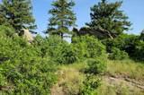 13854 Trail Circle - Photo 2