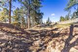 29704 Meadow Spur Lane - Photo 5