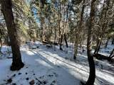 13665 Woodmoor West Drive - Photo 5