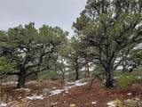 Lot 23 Big Spruce Heights - Photo 22