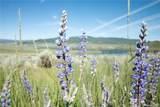 31475 Shoshone Way - Photo 5